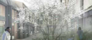 2p-jardin_des_senteurs_lecrin-nicolas_gilsoul---copie